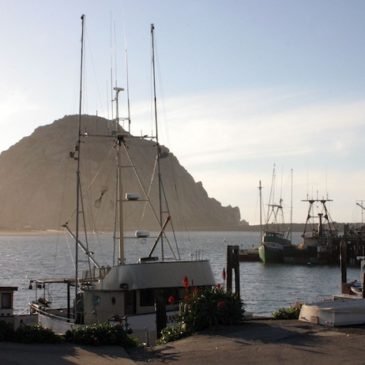 Exploring Morro Bay California