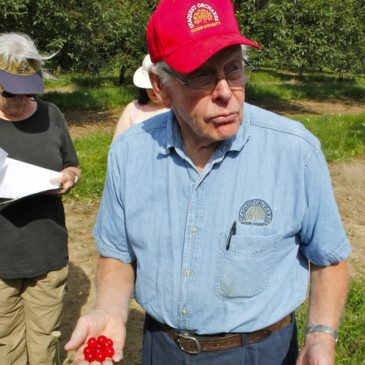 """Wisconsin's Door County """"Cherryland"""" and Apples Too"""