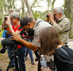 McAllen, Texas World Class Birding, Shopping & Cuisine