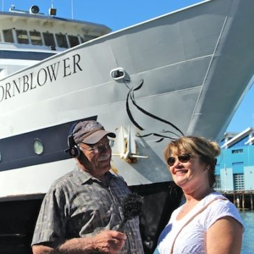 San Diego Whale Watch Adventure Aboard Hornblower Cruises