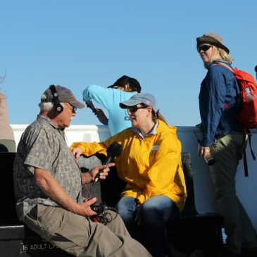 San Diego Whale Watching with Naturalist Guides