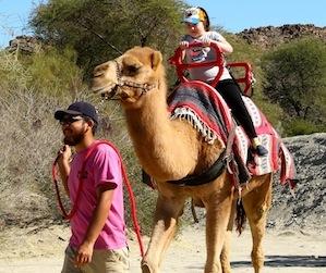The Living Desert Zoo and Gardens in Palm Desert California