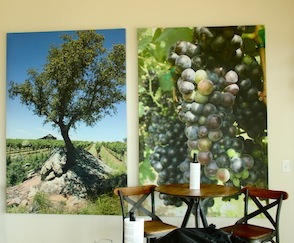 Heart of Texas Hill Country Wine Discovery