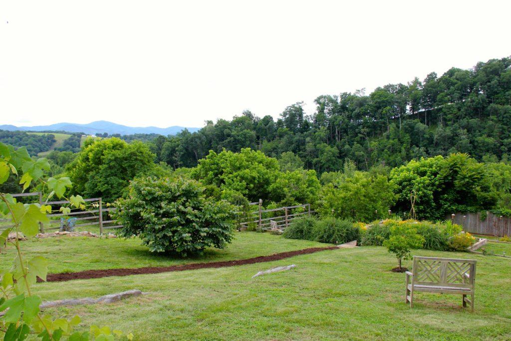Dreamy vista from meditation Garden at Heartstone